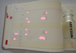 手帳 ypad 使い方 カスタマイズ
