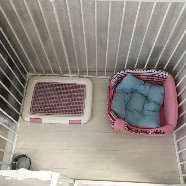 わんちゃん(犬)のおすすめサークル・ケージ、スカンジナビアンペットケージの情報をシェアしています。